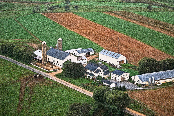 Photograph - Amish Farm Cit 34 by G L Sarti
