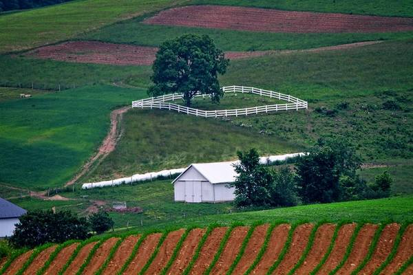 Berlin Ohio Photograph - Amish Landscape by Dan Sproul