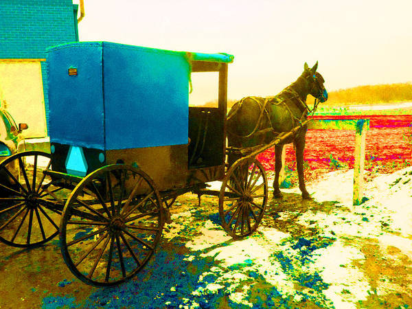 Amish Country Digital Art - Amish Parking Only by Joseph Wiegand