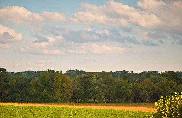 Photograph - Amish Rolling Hills Cit 28 by G L Sarti
