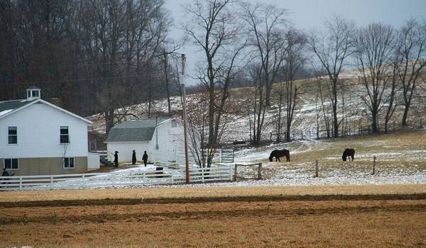Photograph - Amish Schoolhouse by Dan Sproul