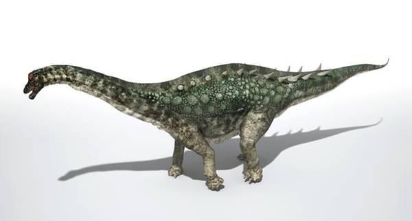 Paleozoology Wall Art - Photograph - Ampelosaurus Dinosaur by Jose Antonio Pe�as