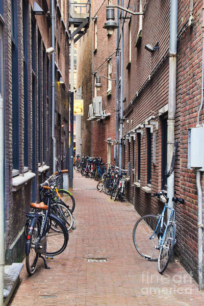 Photograph - Amsterdam Bicycle Alley by Crystal Nederman