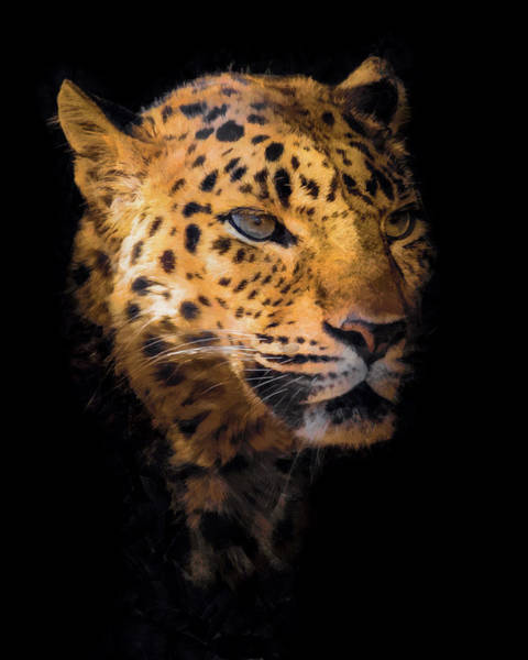 Big Cat Digital Art - Amur Leopard Portrait 2 by Ernie Echols