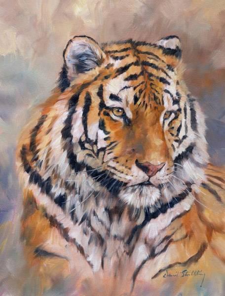 Siberian Tiger Wall Art - Painting - Amur Tiger by David Stribbling