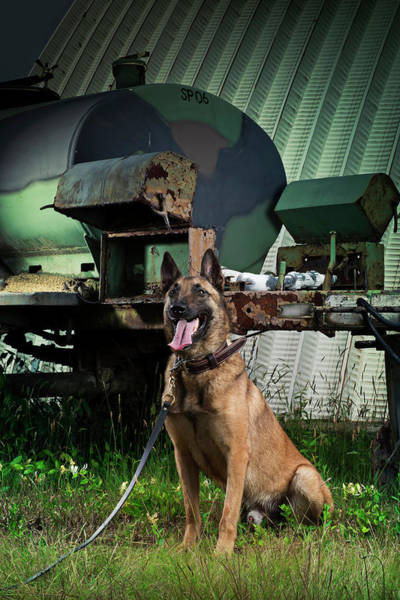 Military Air Base Photograph - An Air Force Security Forces Military by Stacy Pearsall