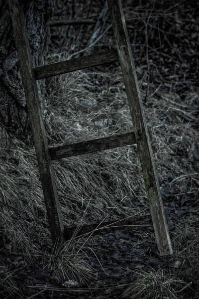 Rungs Wall Art - Photograph - An Alternative Strategy by Odd Jeppesen