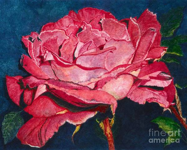 Wall Art - Painting - An American Beauty by Barbara Jewell