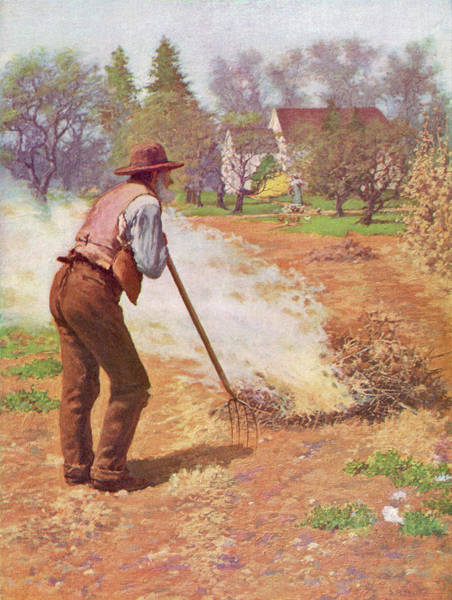 Weeds Drawing - An American Farmer In Spring - Burning by Mary Evans Picture Library
