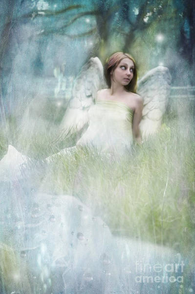 Wall Art - Photograph - An Angel In My Orchard by Angel Ciesniarska