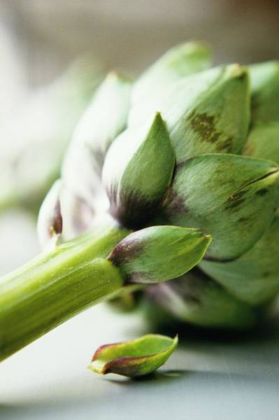 Selective Focus Wall Art - Photograph - An Artichoke by Romulo Yanes