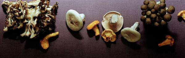 Vegetables Photograph - An Assortment Of Mushrooms by Romulo Yanes