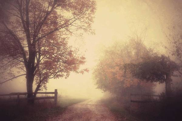 Filter Photograph - An Autumn Day Forever by Joseph Mazzucco
