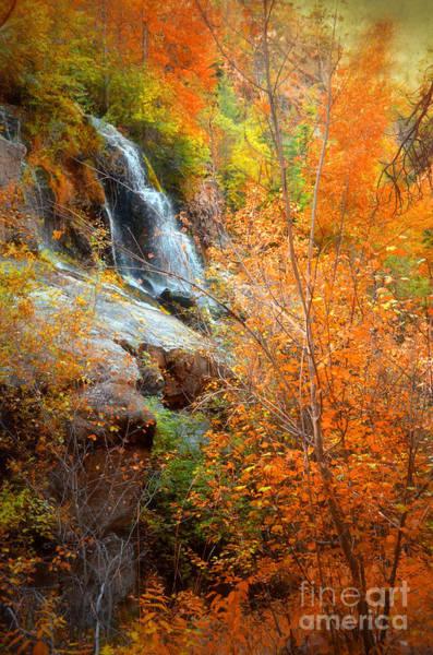Photograph - An Autumn Falls by Tara Turner
