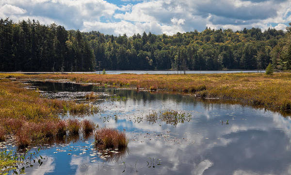 Photograph - An Early Autumn Day On Cary Lake by David Patterson