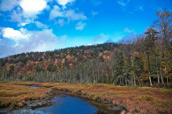 Photograph - An Early Fall Day At Cary Lake by David Patterson