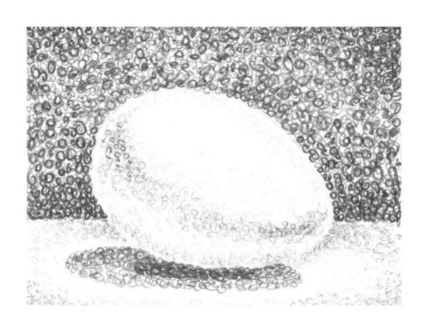 Shadows Drawing - An Egg Study Two by Irina Sztukowski