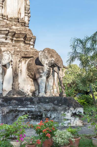 Chang Mai Wall Art - Photograph - An Elephant Emerges by Jennifer Stinson