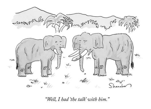 Elephants Drawing - An Elephant With A Condom On One Tusk Speaks by Danny Shanahan