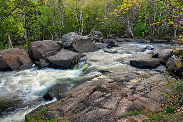 Photograph - An Evening At Strong Falls by Theo O Connor