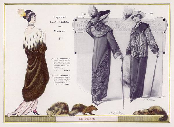 Fur Coat Drawing - An Evening Mantle Or Coat In  Mink by Mary Evans Picture Library