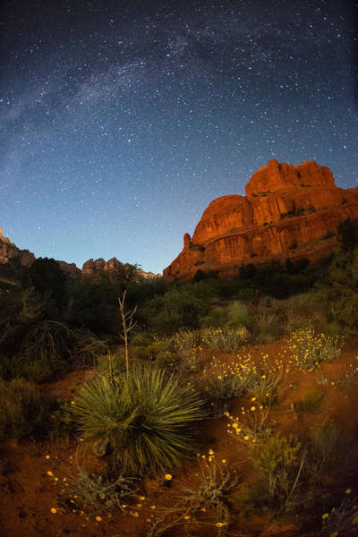 Alpenglow Photograph - An Image Of Seasonal Confusion In Arizona by Mike Berenson