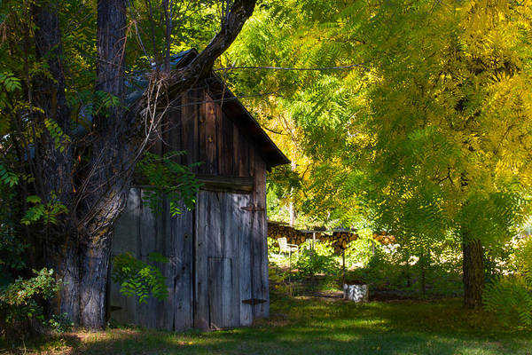 Plumas County Photograph - An Old Barn Near Indian Creek, California by Tirza Roring