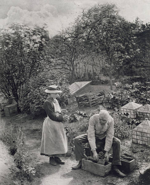 Formal Garden Photograph - An Old Man And His Daughter Gardening by Peter Henry Emerson