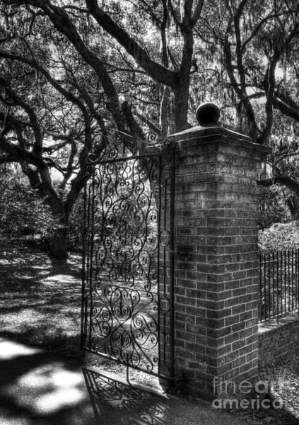 Photograph - An Open Gate 2 Bw by Mel Steinhauer