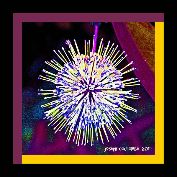 Digital Art - An Orgasmic Moment Of A Spore by Joseph Coulombe