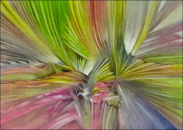 Anahawscape 2008 B Art Print