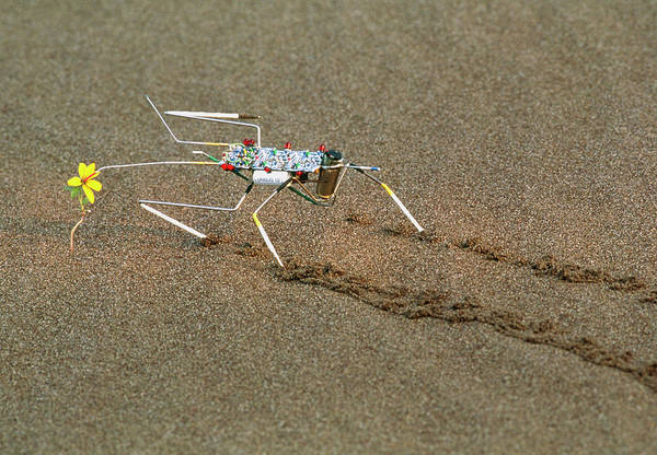 0 Photograph - Analogue Robot Insect by Peter Menzel/science Photo Library