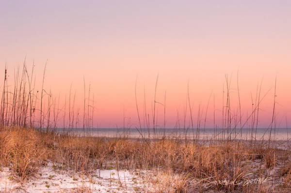 Anastasia Beach Dunes Sunset Art Print