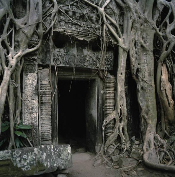 Photograph - Ancient Angkor by Shaun Higson