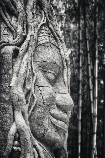 Relic Photograph - Ancient Buddha Stone Head by Adam Romanowicz