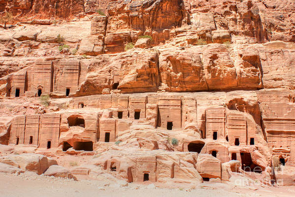 Photograph - Ancient Dwellings At Petra by David Birchall