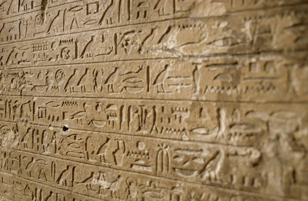 Hieroglyph Photograph - Ancient Egyptian Hieroglyphs by Petrie Museum Of Egyptian Archaeology, Ucl