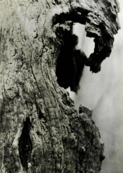 Photograph - Ancient Goddess by Rebecca Sherman