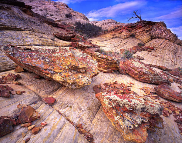 Photograph - Ancient Rocks by Ray Mathis