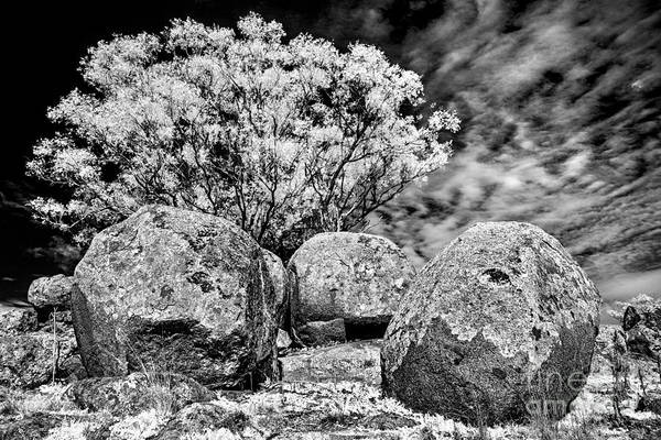 Photograph - Ancient by Russell Brown