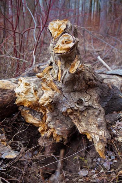 Photograph - Ancient Warrior by Omaste Witkowski