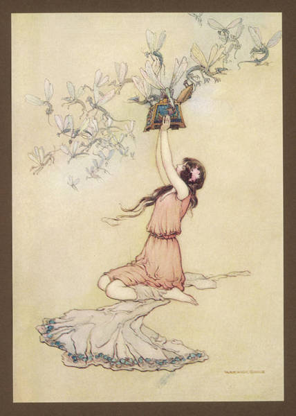 Wall Art - Drawing - 'and Out Flew All The Ills  That Flesh by Mary Evans Picture Library