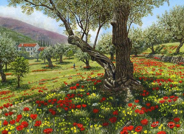 Andalucia Wall Art - Painting - Andalucian Olive Grove by Richard Harpum