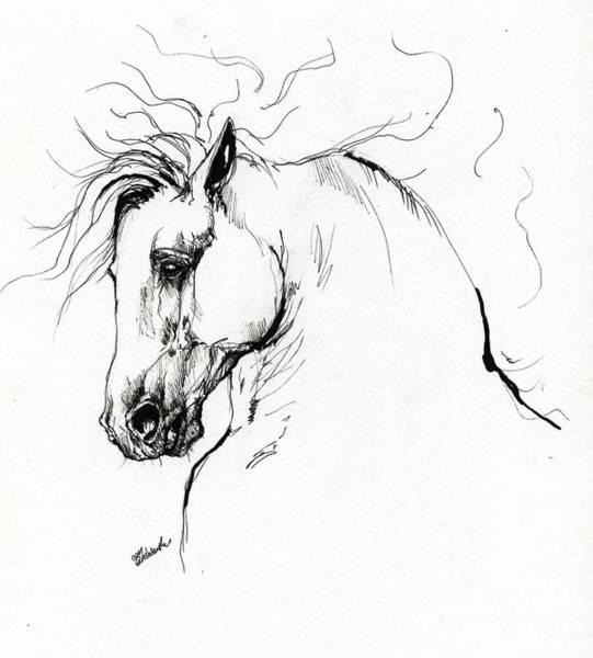 Andalusian Stallion Wall Art - Drawing - Andalusian Horse Drawing 1 by Angel Ciesniarska