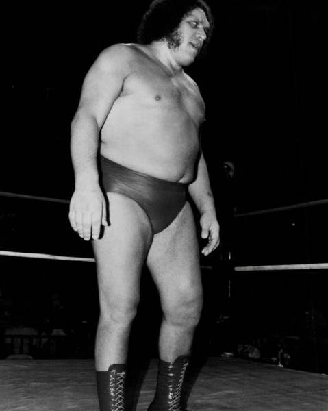 Wwe Wall Art - Photograph - Andre The Giant by Retro Images Archive
