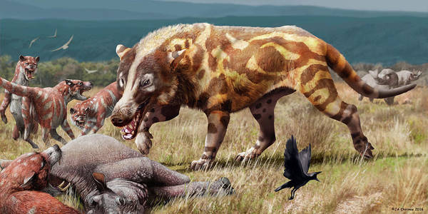 Wall Art - Photograph - Andrewsrchus Prehistoric Mammal by Jaime Chirinos/science Photo Library