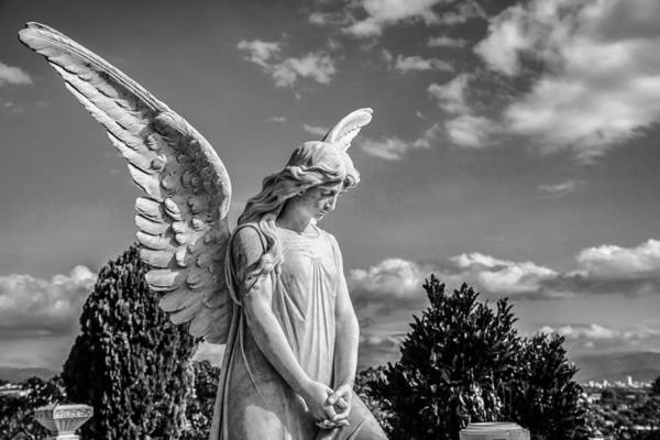 Cementery Photograph - Angel At The Heredia General Cemetery by Andres Leon