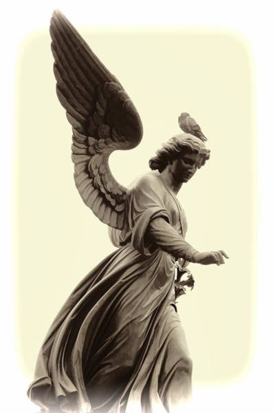 Photograph - Angel In Central Park by Alice Gipson