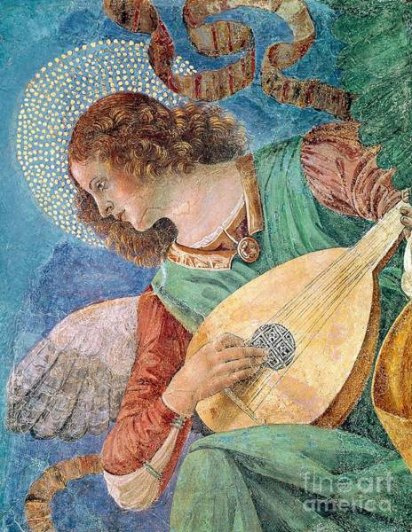 Strum Wall Art - Painting - Angel Musician by Melozzo da Forli