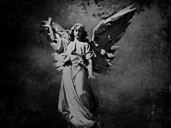 Photograph - Angel Of Death Bw by David Dehner